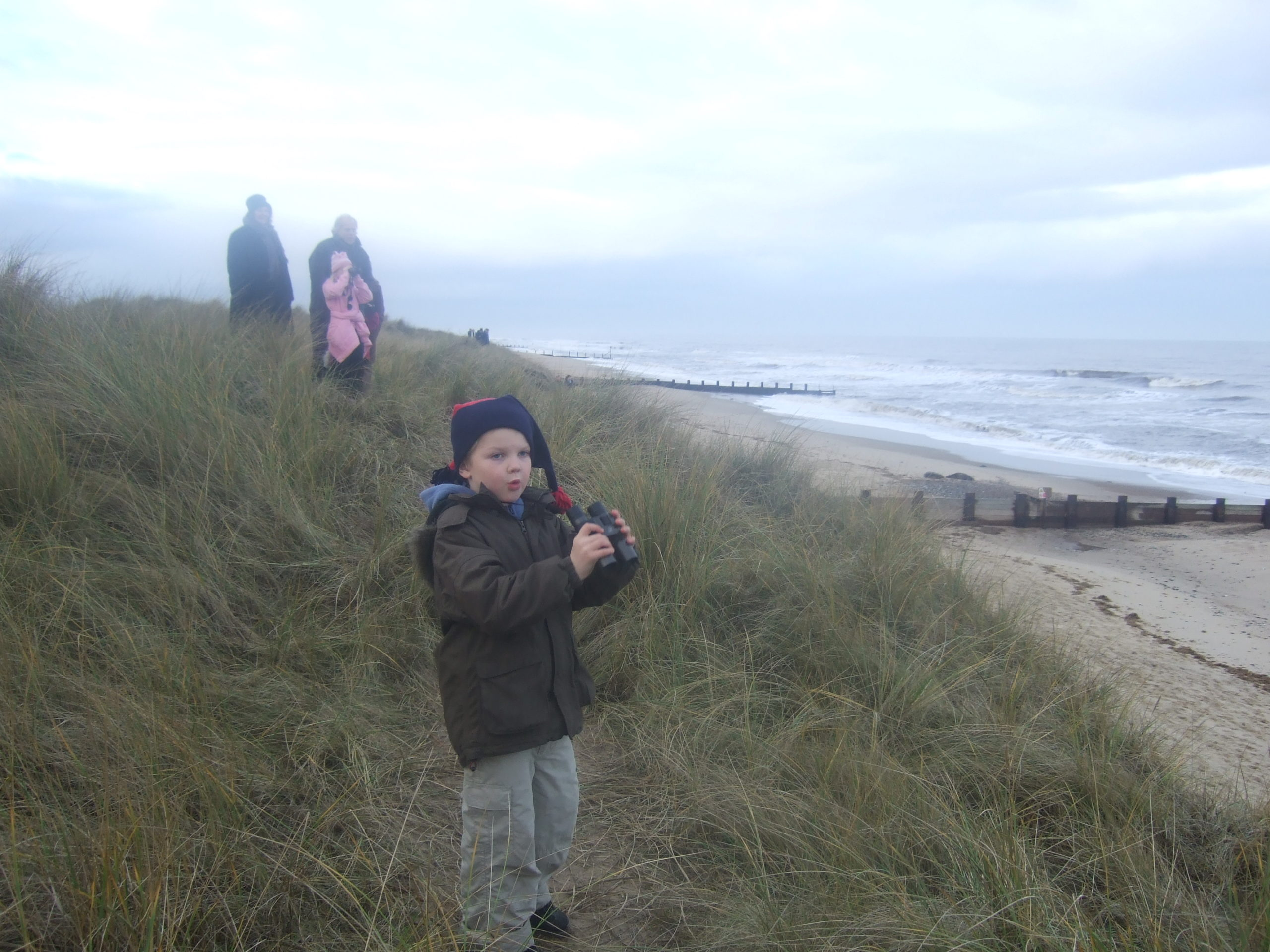 searching for Seals in Norfolk